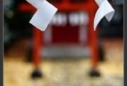5D Mark II,Autumn,Jindai,Jindaiji,Jinja,Shinto,gallery