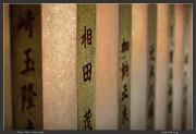 Chofu,Japan,Jindai,Tokyo,ef 70-200mm,eos 5d mark ii