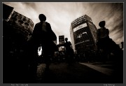 Japan,Shibuya,Street,Tokyo,city,crosswalk,ef 14mm f/2.8 II,eos 5d mark ii,urban