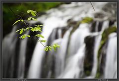 Tateshina Falls in Spring