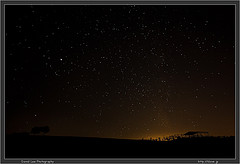 Stars over the cow pasture
